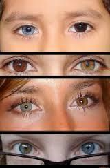 Yeux vairons